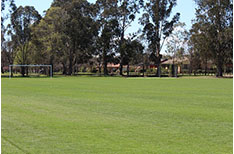 Oval: This is a shared public space but allows space for large ball sports and includes cricket pitches.