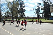 image of the Physical Education Class
