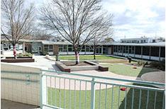 Majura Primary School Courtyard